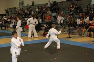 Marco Island Karate - AAU Regional 2014 - 08