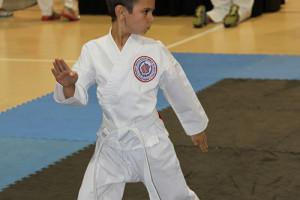 Marco Island Karate - AAU Regional 2014 - 10