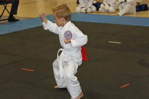 Marco Island Karate - AAU Regional 2014 - 11