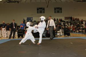 Marco Island Karate - AAU Regional 2014 - 13